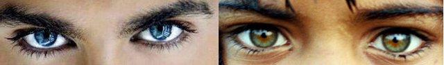 Темный цвет глаз