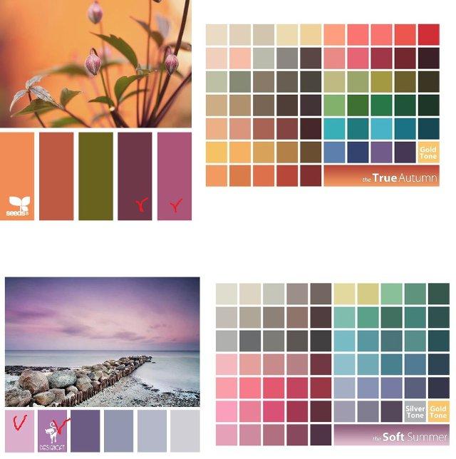 Теплая осень и мягкое лето - природные цветовые сочетания